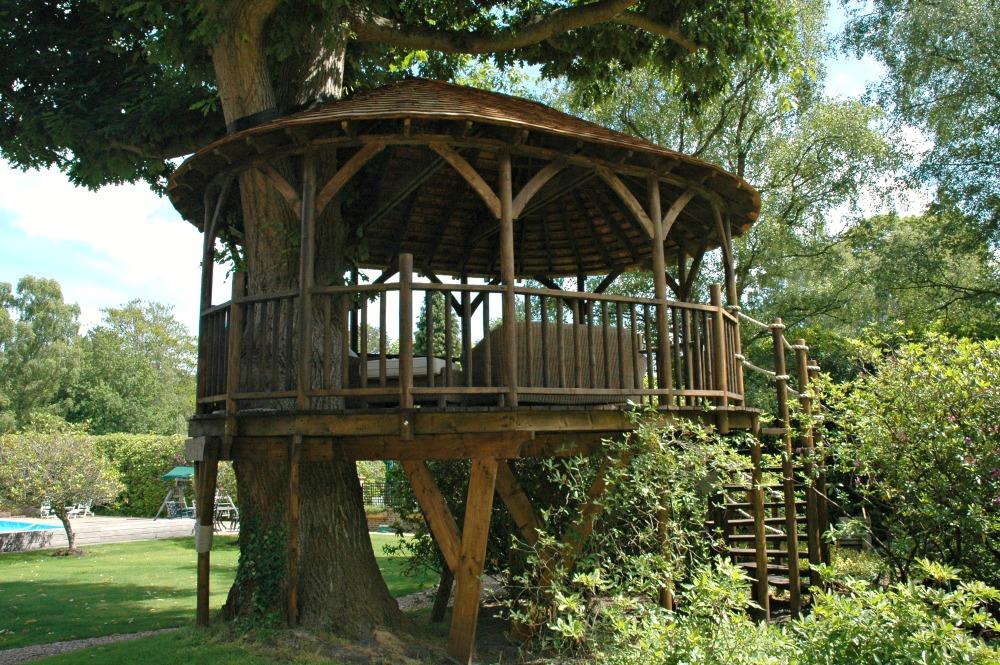 Treetop Pavilion - Blue Forest