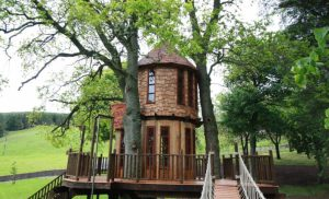 Fairytale Tree House (3)