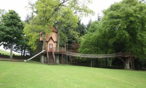 Fairytale Tree House (6)