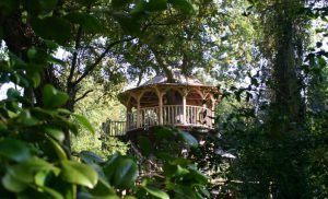 The Treetop Dining treehouse, built and designed by Blue Forest, is built round a 300 year-old oak tree.