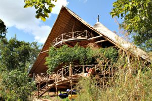 The Tongole Wilderness Lodge in Malawi, a treehouse designed by Blue Forest, was built with locally sourced materials where possible.