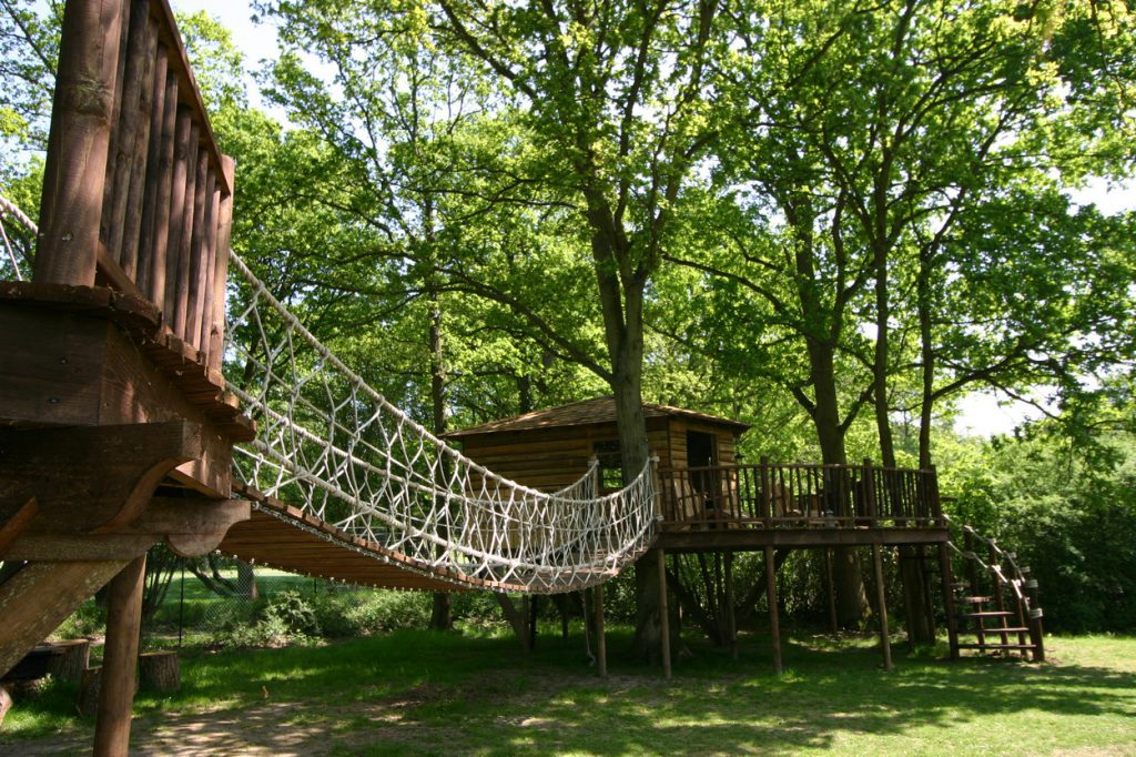 Adventure Decks Tree House 3