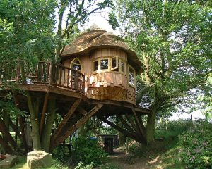 The Lake District Treehouse, built and designed by Blue Forest, sits nestled high in the treetops.