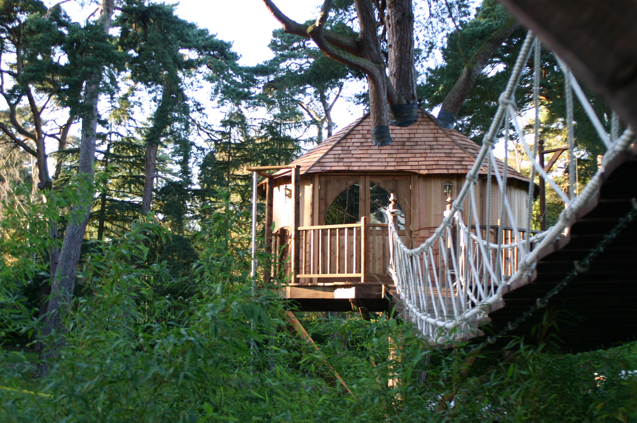 View across rope bridge to tree house