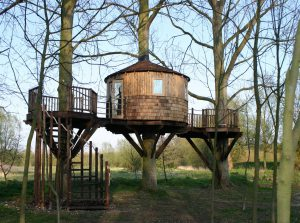 Woodland Den Tree House 2