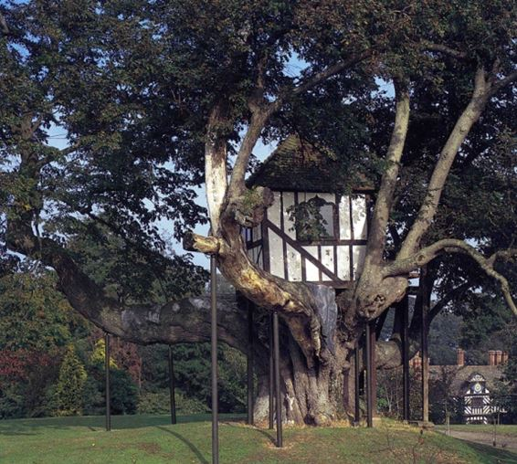 Pitchford Hall Tree House