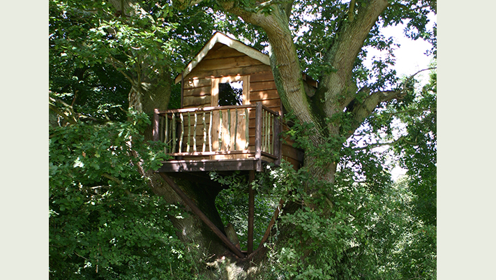 Bird's Nest Tree House - Blue Forest (1)