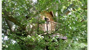 The Bird's Nest treehouse, built and designed by Blue Forest, blends in with the surrounding foliage.