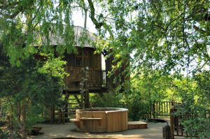 The Willow Nook treehouse, designed and built by Blue Forest, is accessed by a wooden walkway.