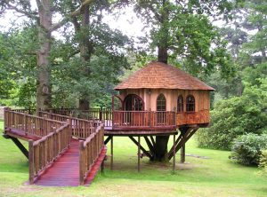 Hideaway Tree House - Blue Forest (8)