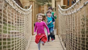 A treehouse rope bridge at the Alton Towers Enchanted Village, designed and built by Blue Forest.