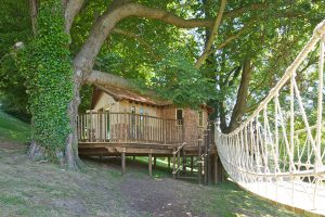 Hazelwood School Treehouse, built and designed by Blue Forest, can be accessed via a wooden staircase.