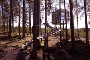 The Mirror Cube is a room at Sweden's Treehotel.