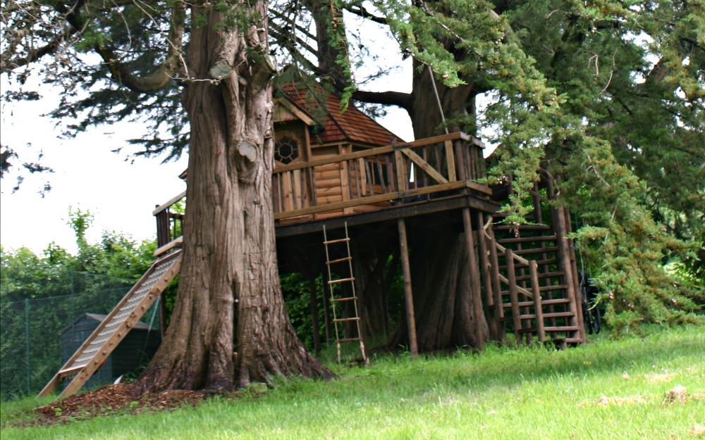 Cedar-Lodge-Blue-Forest-3