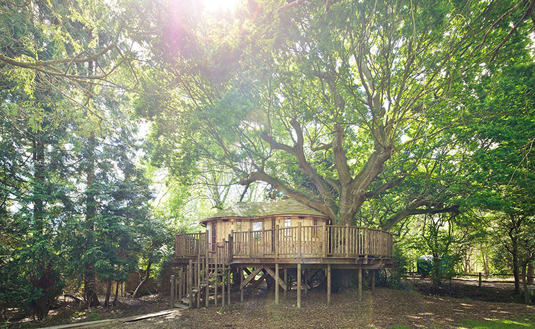 Little Acorn Treehouse