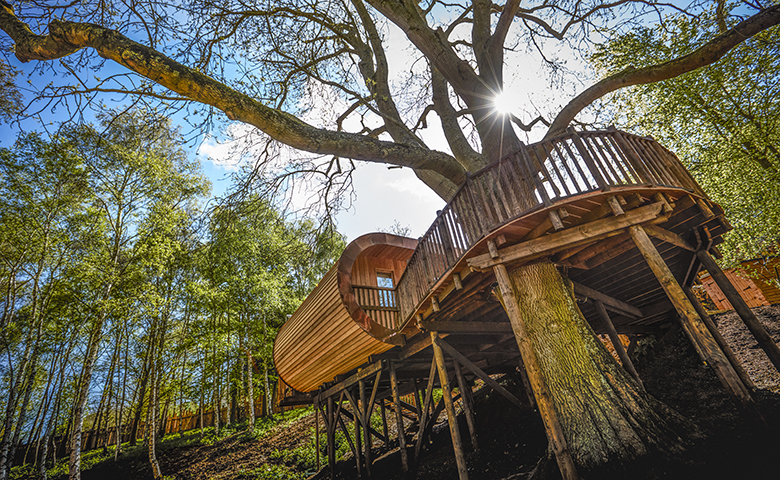 The Fish Hotel Treehouses
