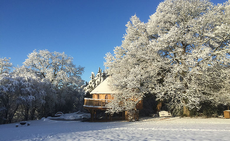 Trewalter Treehouse