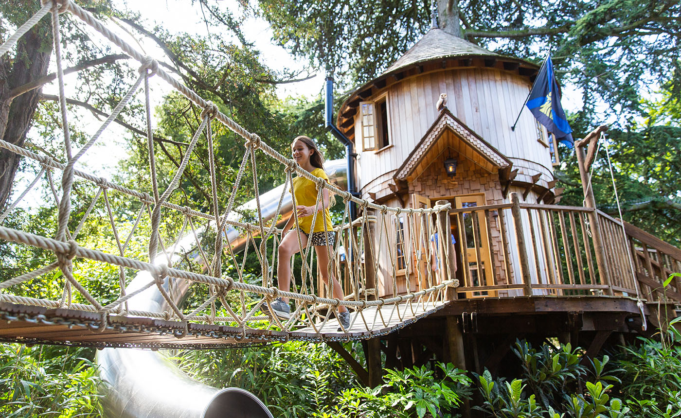 6 Treehouse Design Trends That Are Here To Stay Blue Forest
